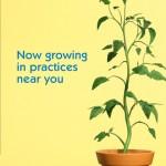 Pentacel Plant